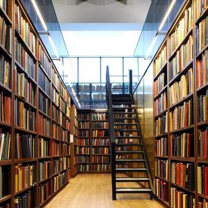 Библиотеки Заплюсья